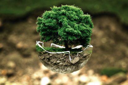 A Política Nacional do Meio Ambiente é um marco da Constituição Federal de 88. Ela é base para a elaboração de Leis importantes para a preservação e desenvolvimento consciente do país